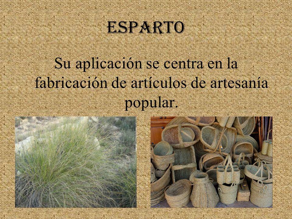 ESPARTO Su aplicación se centra en la fabricación de artículos de artesanía popular.