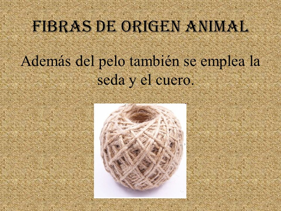 FIBRAS DE ORIGEN ANIMAL Además del pelo también se emplea la seda y el cuero.