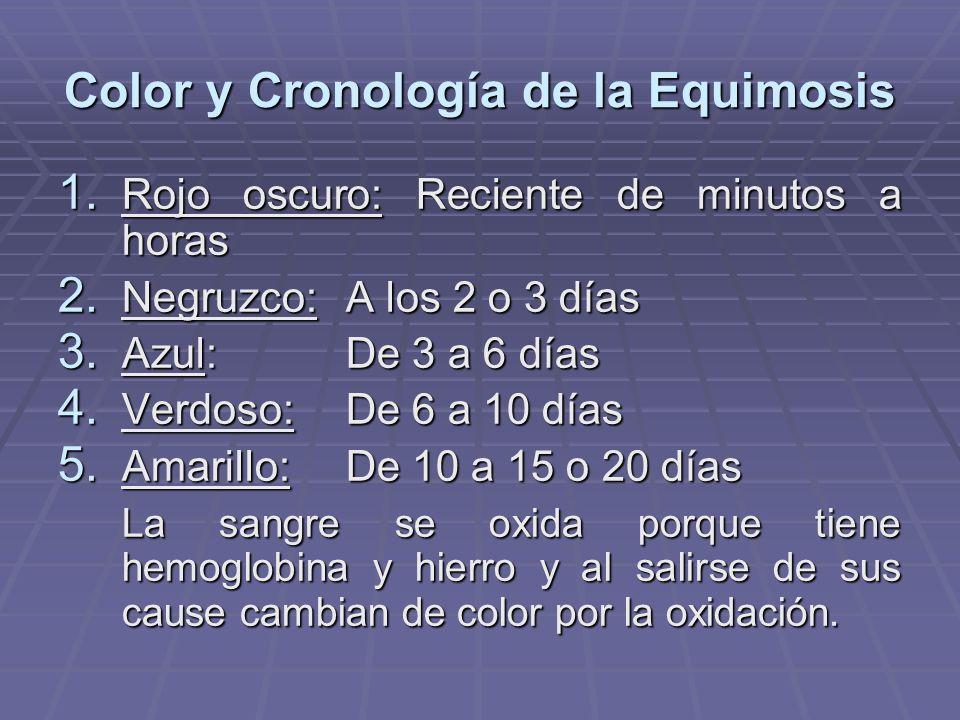 Color y Cronología de la Equimosis 1. Rojo oscuro: Reciente de minutos a horas 2. Negruzco:A los 2 o 3 días 3. Azul: De 3 a 6 días 4. Verdoso:De 6 a 1