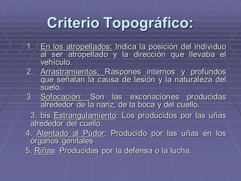 Criterio Topográfico: 1.En los atropellados: Indica la posición del individuo al ser atropellado y la dirección que llevaba el vehículo. 2.Arrastramie