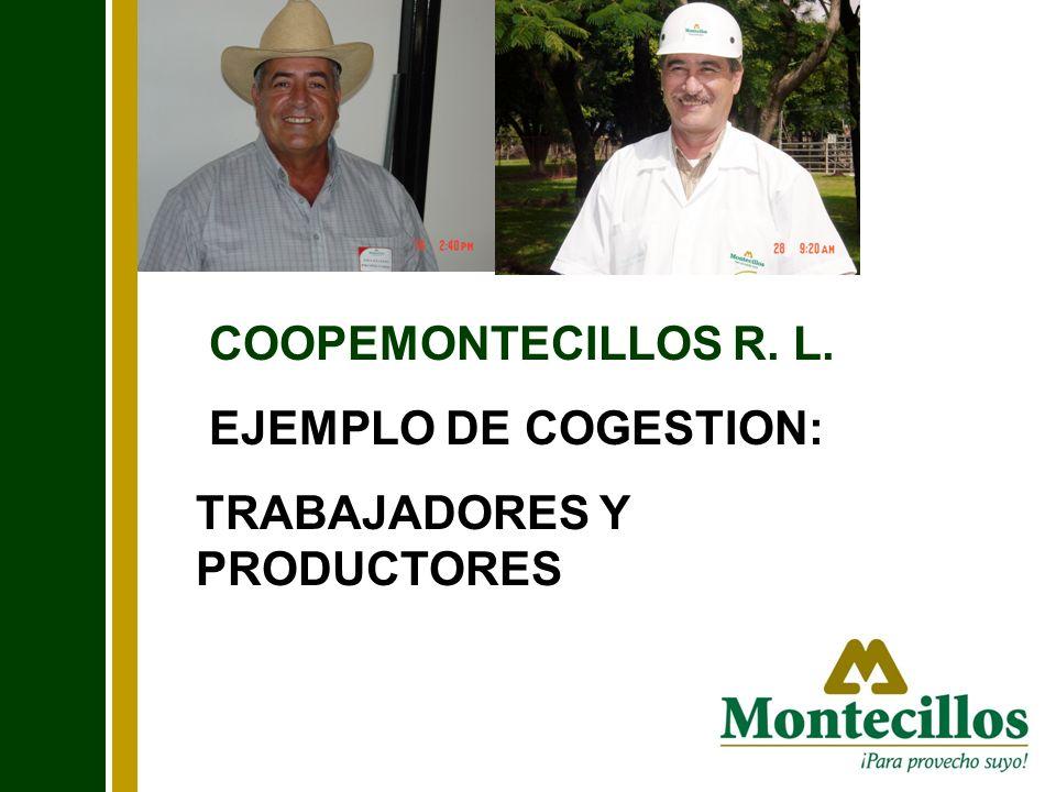 COOPEMONTECILLOS R. L. EJEMPLO DE COGESTION: TRABAJADORES Y PRODUCTORES