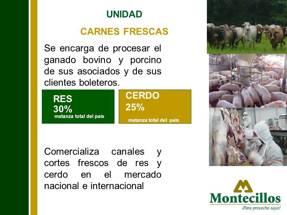 UNIDAD CARNES FRESCAS Se encarga de procesar el ganado bovino y porcino de sus asociados y de sus clientes boleteros. Comercializa canales y cortes fr