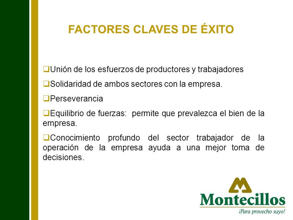 FACTORES CLAVES DE ÉXITO Unión de los esfuerzos de productores y trabajadores Solidaridad de ambos sectores con la empresa. Perseverancia Equilibrio d