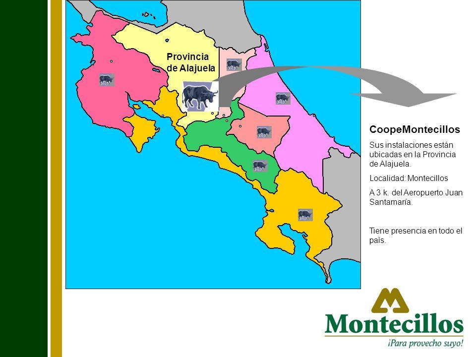 Provincia de Alajuela CoopeMontecillos Sus instalaciones están ubicadas en la Provincia de Alajuela. Localidad: Montecillos A 3 k. del Aeropuerto Juan