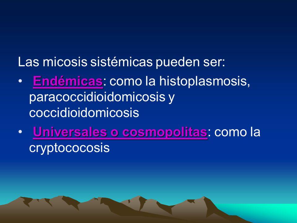 Las micosis sistémicas pueden ser: Endémicas Endémicas: como la histoplasmosis, paracoccidioidomicosis y coccidioidomicosis Universales o cosmopolitas