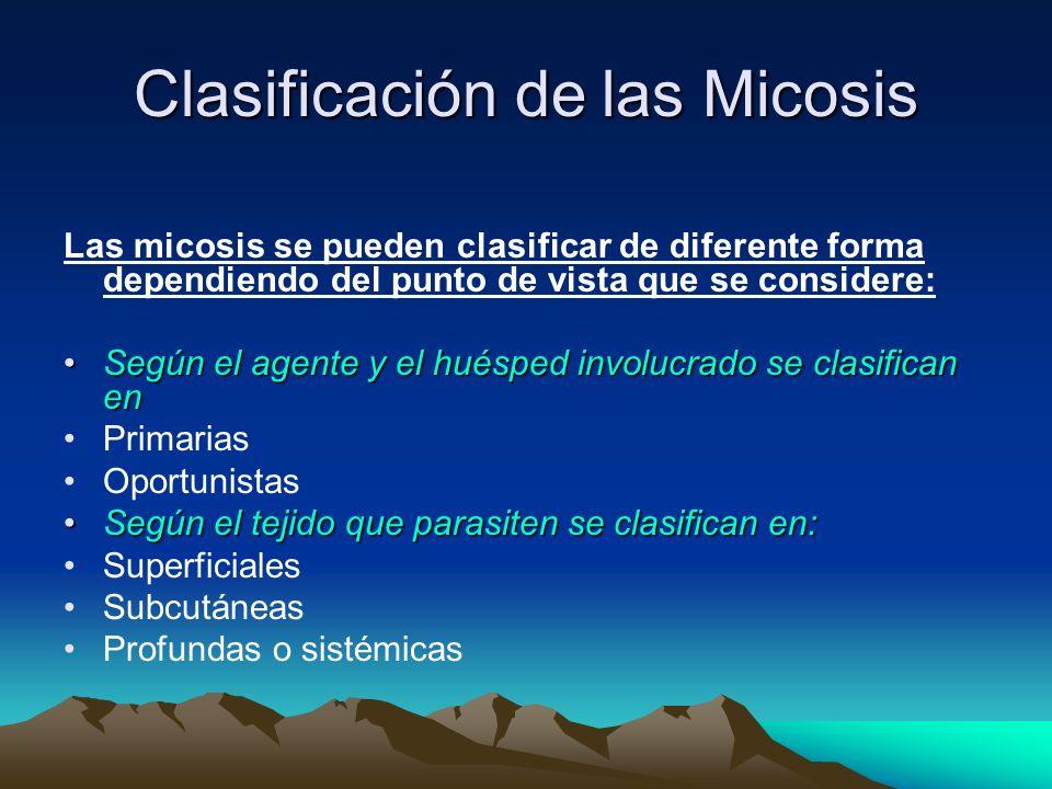 Clasificación de las Micosis Las micosis se pueden clasificar de diferente forma dependiendo del punto de vista que se considere: Según el agente y el