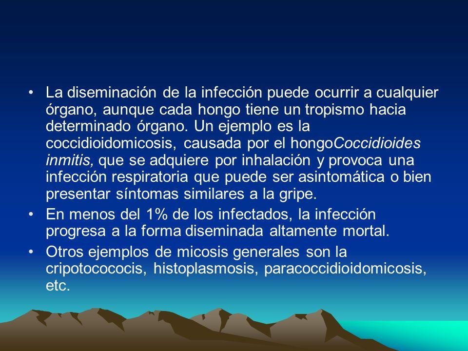 La diseminación de la infección puede ocurrir a cualquier órgano, aunque cada hongo tiene un tropismo hacia determinado órgano. Un ejemplo es la cocci