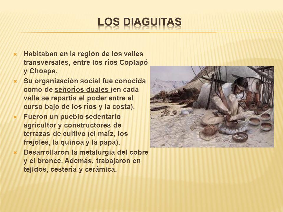Habitaban en la región de los valles transversales, entre los ríos Copiapó y Choapa.