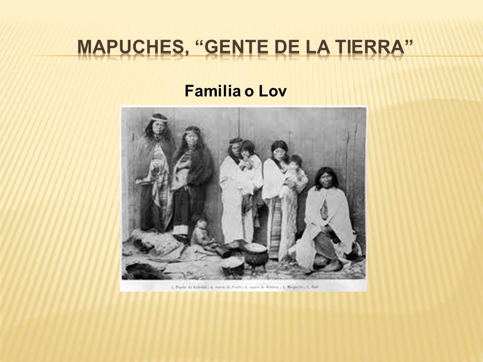 Familia o Lov