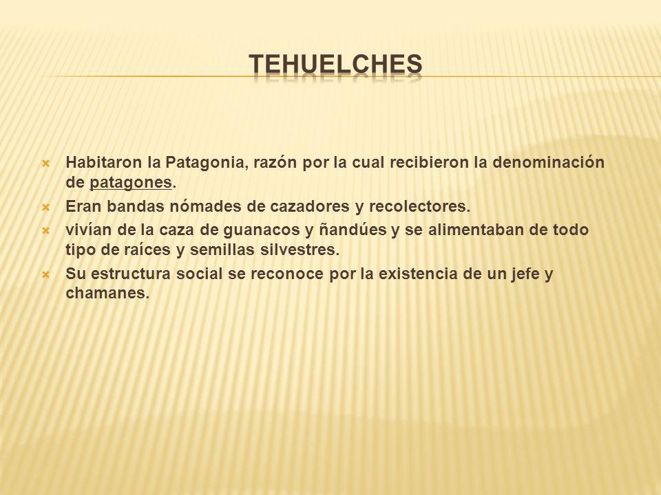 Habitaron la Patagonia, razón por la cual recibieron la denominación de patagones.