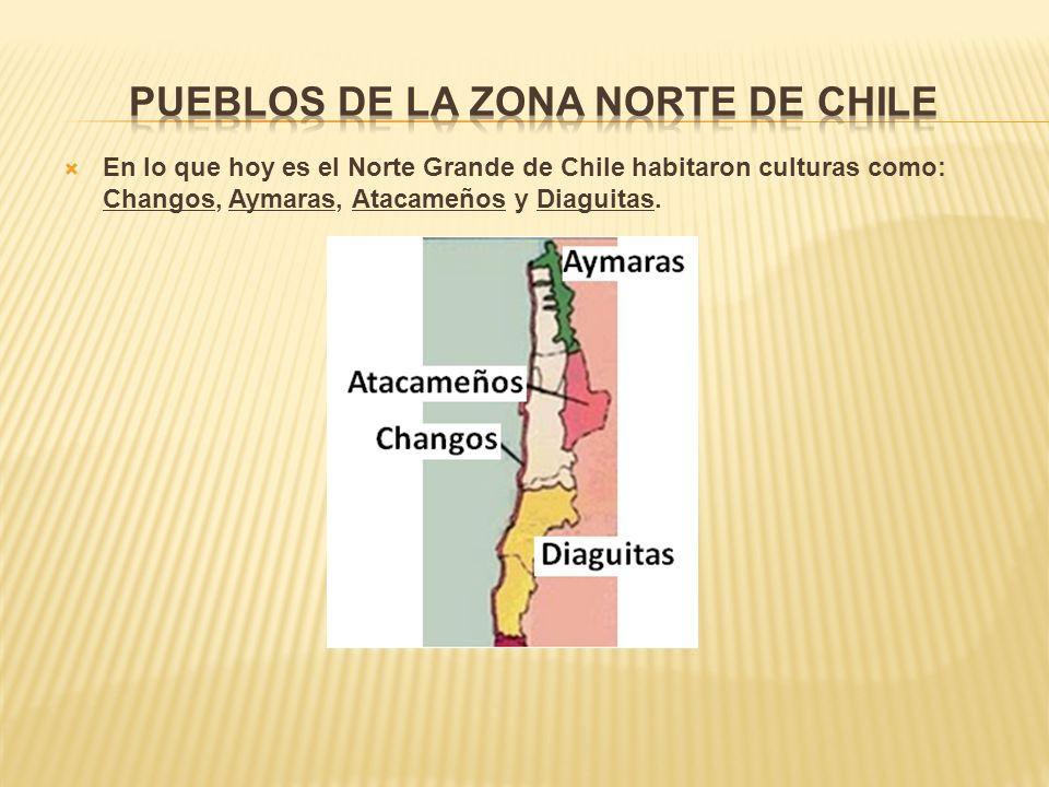En lo que hoy es el Norte Grande de Chile habitaron culturas como: Changos, Aymaras, Atacameños y Diaguitas.