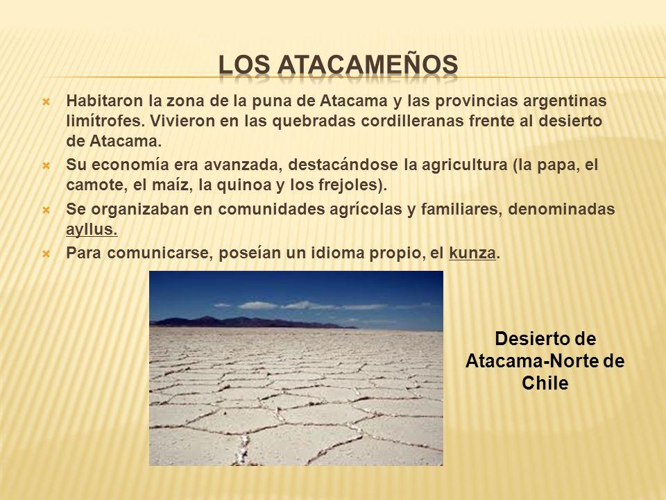 Habitaron la zona de la puna de Atacama y las provincias argentinas limítrofes.