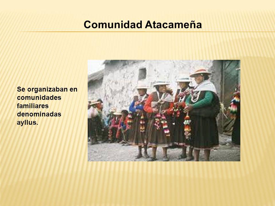 Comunidad Atacameña Se organizaban en comunidades familiares denominadas ayllus.