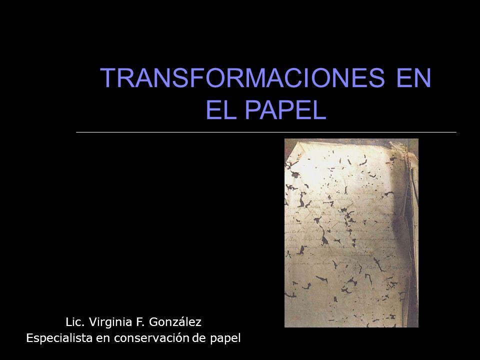 TRANSFORMACIONES EN EL PAPEL Lic. Virginia F. González Especialista en conservación de papel