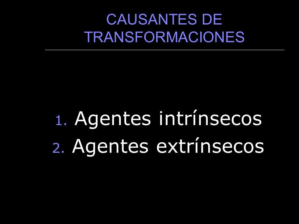 CAUSANTES DE TRANSFORMACIONES 1. Agentes intrínsecos 2. Agentes extrínsecos