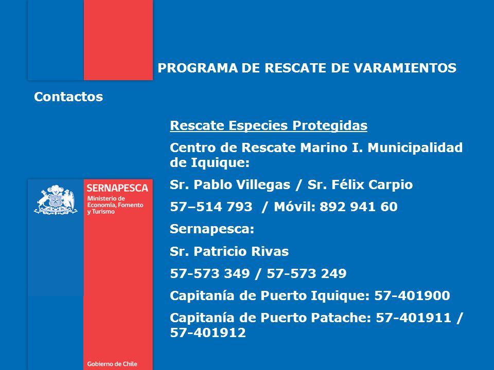 PROGRAMA DE RESCATE DE VARAMIENTOS Rescate Especies Protegidas Centro de Rescate Marino I. Municipalidad de Iquique: Sr. Pablo Villegas / Sr. Félix Ca