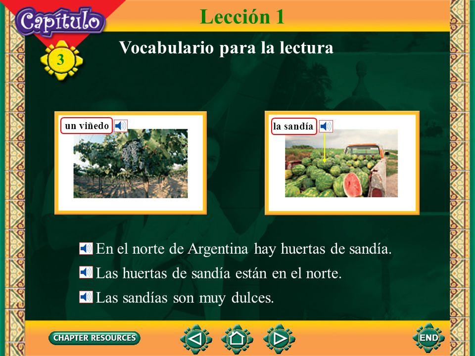 3 Vocabulario belicoso(a)aggressive, warlike borrascoso(a)stormy dulcesweet marino(a)marine, sea (adj.) pacífico(a)pacific la ganaderíacattle el ganadocattle (English-Spanish)