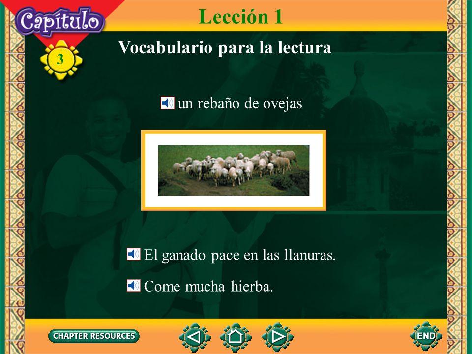 3 Vocabulario para la lectura Lección 1 Los cerros no son muy altos. No son tan altos como un monte. un cerro una llanura una sabana la hierba