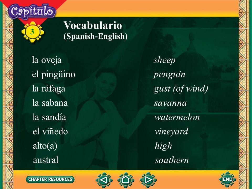 3 Vocabulario la ballenawhale (Spanish-English) el cerrohill el chaparróndownpour el elefante marinoelephant seal el glaciarglacier la llanuraplain el