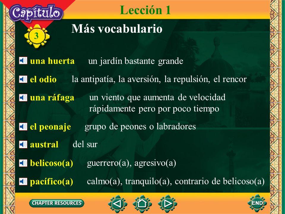 3 una blusa rayada (de rayas) Lección 2 Vocabulario para la conversación una bufanda de cuadros