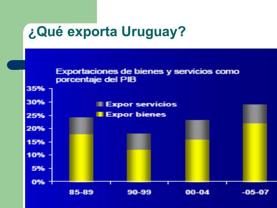 ¿Qué exporta Uruguay?