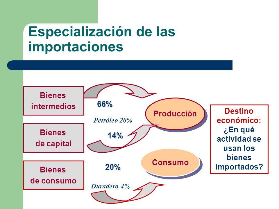 Especialización de las importaciones Producción Consumo Destino económico: ¿En qué actividad se usan los bienes importados? 66% 14% 20% Bienes interme