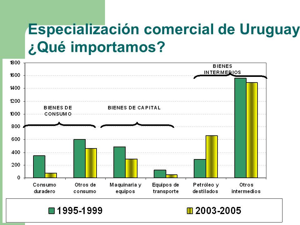 Especialización comercial de Uruguay ¿Qué importamos?