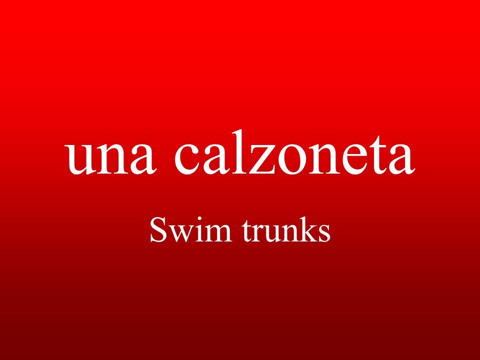 una calzoneta Swim trunks