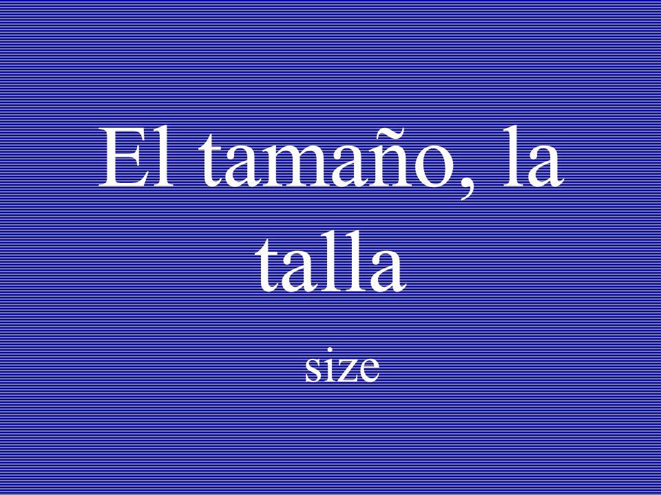 El tamaño, la talla size