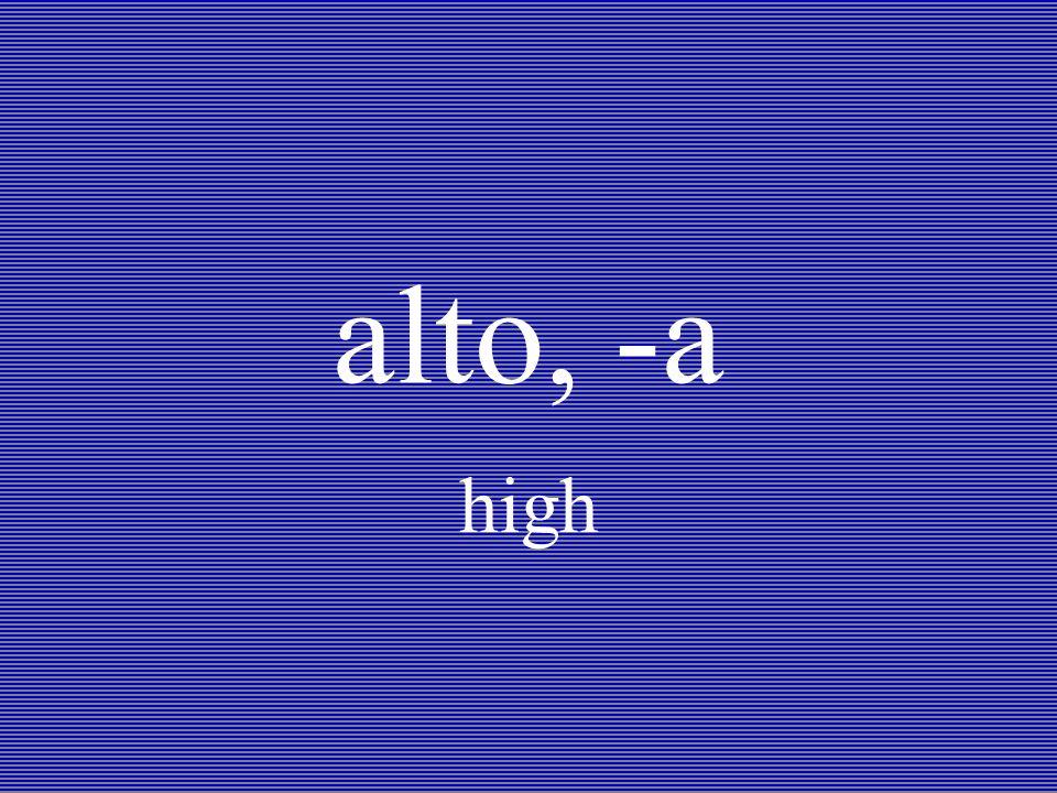 alto, -a high