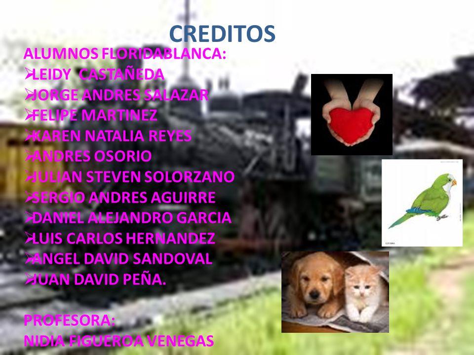 CREDITOS ALUMNOS FLORIDABLANCA: LEIDY CASTAÑEDA JORGE ANDRES SALAZAR FELIPE MARTINEZ KAREN NATALIA REYES ANDRES OSORIO JULIAN STEVEN SOLORZANO SERGIO ANDRES AGUIRRE DANIEL ALEJANDRO GARCIA LUIS CARLOS HERNANDEZ ANGEL DAVID SANDOVAL JUAN DAVID PEÑA.
