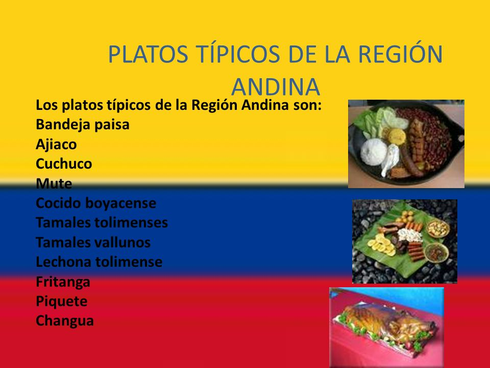 PLATOS TÍPICOS DE LA REGIÓN ANDINA Los platos típicos de la Región Andina son: Bandeja paisa Ajiaco Cuchuco Mute Cocido boyacense Tamales tolimenses Tamales vallunos Lechona tolimense Fritanga Piquete Changua