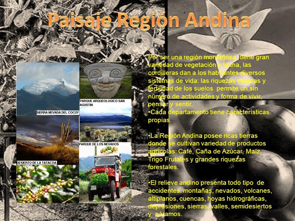 Por ser una región montañosa tiene gran variedad de vegetación y fauna, las cordilleras dan a los habitantes diversos sistemas de vida: las riquezas m