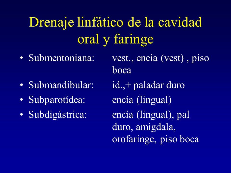 Drenaje linfático de la lengua Anterior:submentoniano Central:subdigástrico, bifurcación, yuguloomohioídea Posterior:yuguloomohioídea, faringe lat Lateral:submandibular