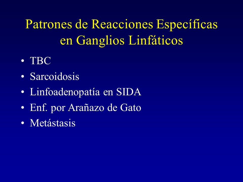 Adenopatía en TBC Resp Granulomatosa Especialmente en hilio pulmonar o mediastino.