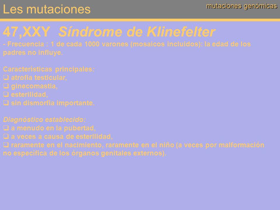 Les mutaciones mutaciones genómicas 47,XXY Síndrome de Klinefelter - Frecuencia : 1 de cada 1000 varones (mosaicos incluidos): la edad de los padres n