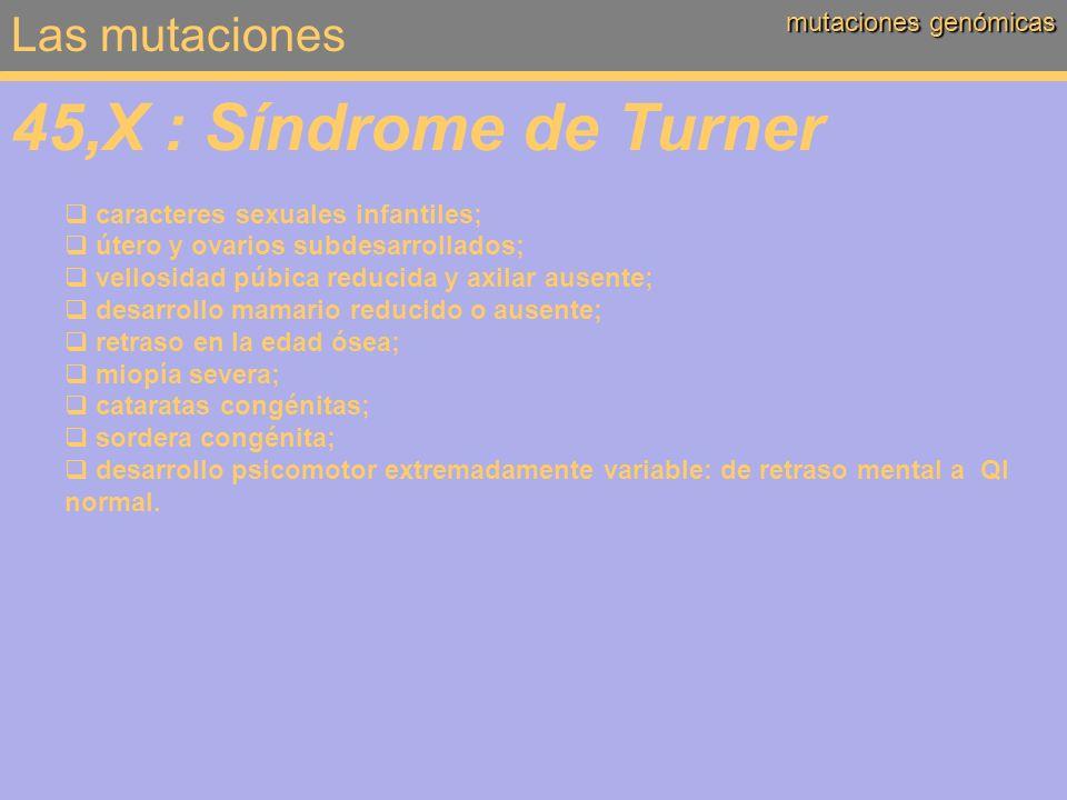Las mutaciones mutaciones genómicas 45,X : Síndrome de Turner caracteres sexuales infantiles; útero y ovarios subdesarrollados; vellosidad púbica redu