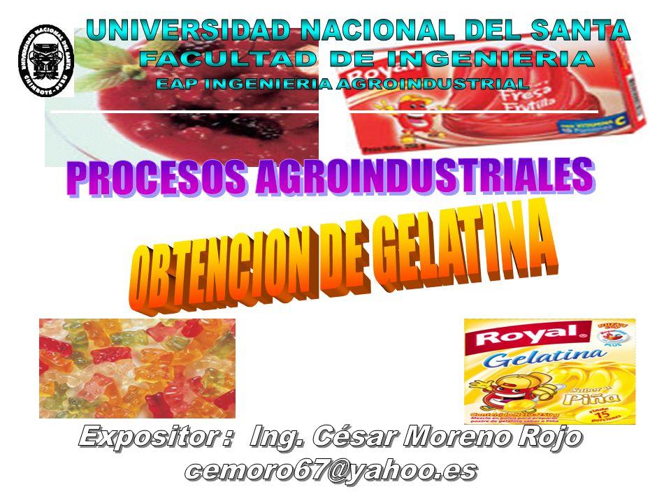 DEFINICION La gelatina es una proteína, es decir, un polímero compuesto por aminoácidos.