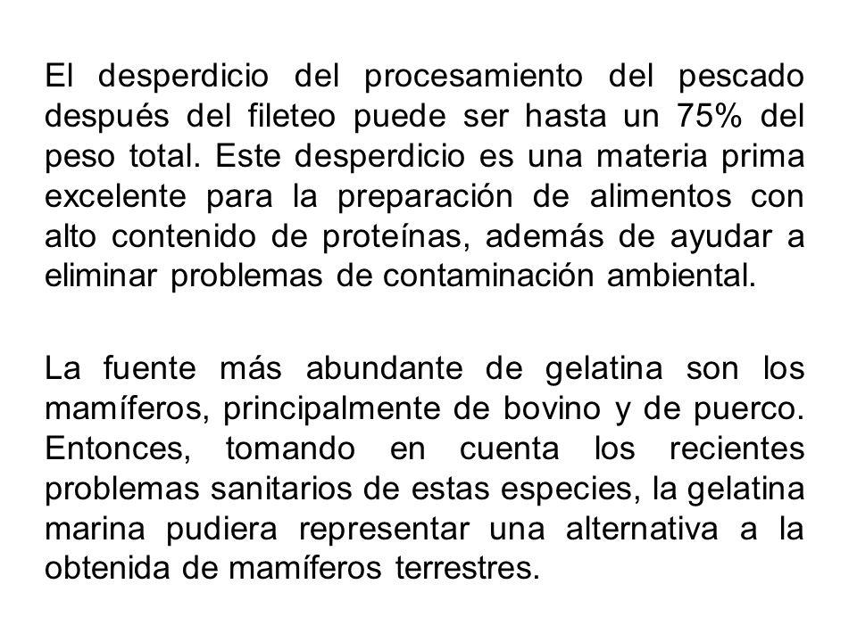 El desperdicio del procesamiento del pescado después del fileteo puede ser hasta un 75% del peso total. Este desperdicio es una materia prima excelent