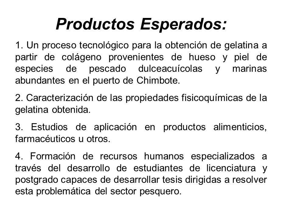 Productos Esperados: 1. Un proceso tecnológico para la obtención de gelatina a partir de colágeno provenientes de hueso y piel de especies de pescado