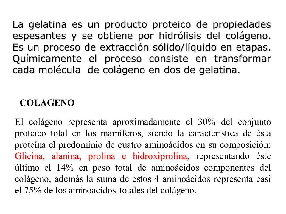 La gelatina es un producto proteico de propiedades espesantes y se obtiene por hidrólisis del colágeno. Es un proceso de extracción sólido/líquido en
