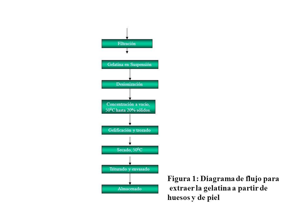 Filtración Gelatina en Suspensión Desionización Concentración a vacío, 50 0 C hasta 20% sólidos. Gelificación y trozado Secado, 50 0 C Triturado y env