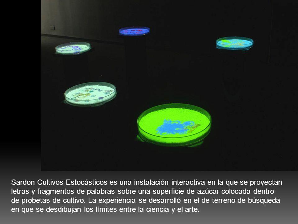 Sardon Cultivos Estocásticos es una instalación interactiva en la que se proyectan letras y fragmentos de palabras sobre una superficie de azúcar colo