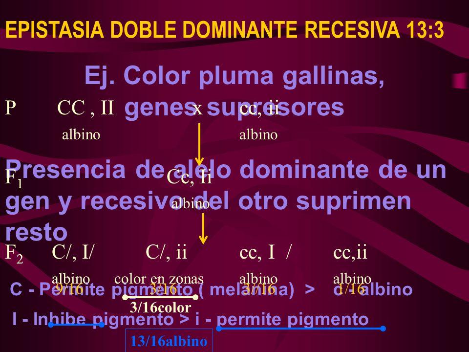 Ej. Color pluma gallinas, genes supresores Presencia de alelo dominante de un gen y recesivo del otro suprimen resto C - Permite pigmento ( melanina)