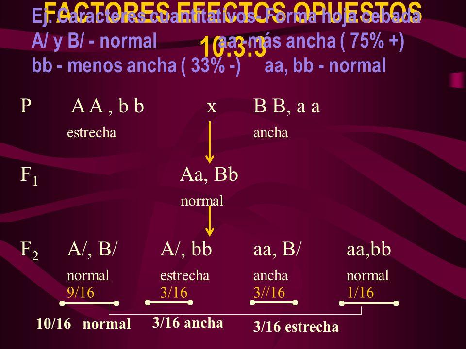 FACTORES EFECTOS OPUESTOS 10:3:3 Ej. Caracteres cuantitativos- Forma hoja cebada A/ y B/ - normalaa -más ancha ( 75% +) bb - menos ancha ( 33% -)aa, b