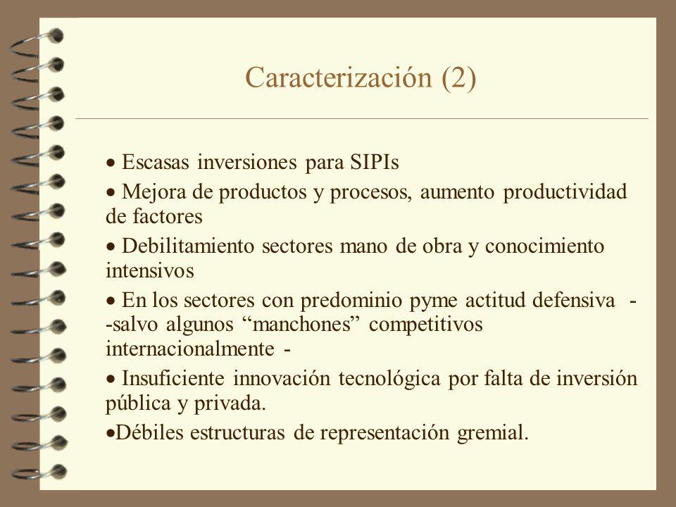 Caracterización (2) Escasas inversiones para SIPIs Mejora de productos y procesos, aumento productividad de factores Debilitamiento sectores mano de o