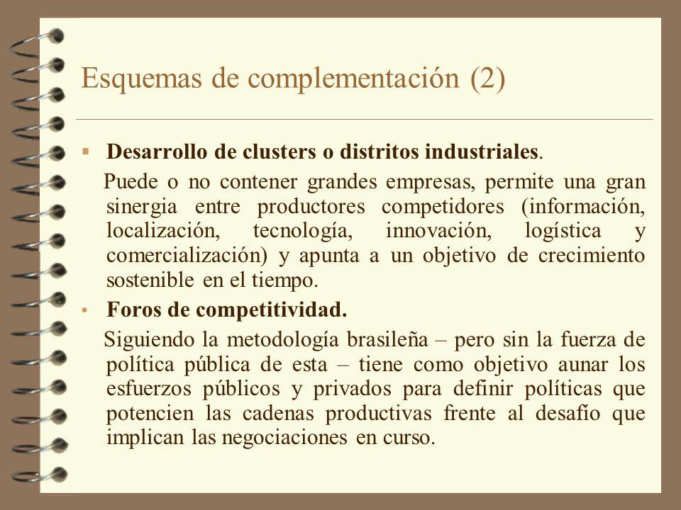 Esquemas de complementación (2) Desarrollo de clusters o distritos industriales. Puede o no contener grandes empresas, permite una gran sinergia entre