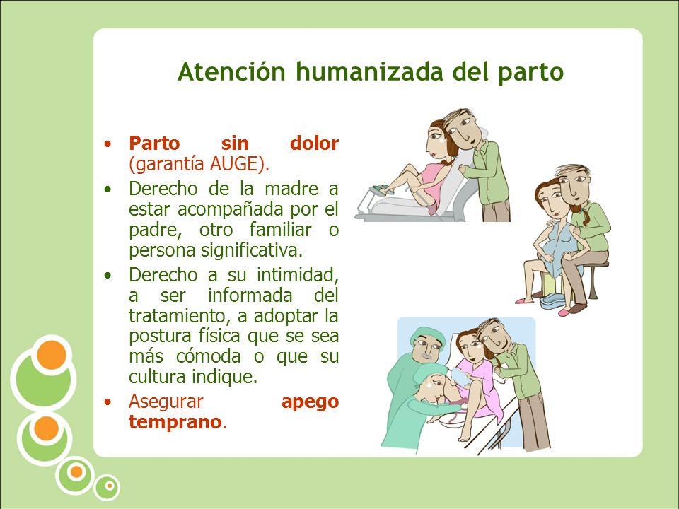 Atención humanizada del parto Parto sin dolor (garantía AUGE).