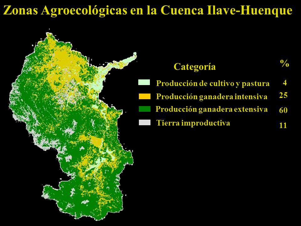Zonas Agroecológicas en la Cuenca Ilave-Huenque Producción de cultivo y pastura Categoría % Producción ganadera intensiva Producción ganadera extensiva Tierra improductiva 4 25 60 11