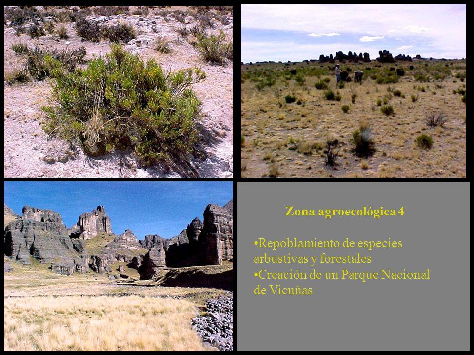 Repoblamiento de especies arbustivas y forestales Creación de un Parque Nacional de Vicuñas Zona agroecológica 4